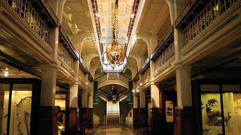 Museu de Manchester